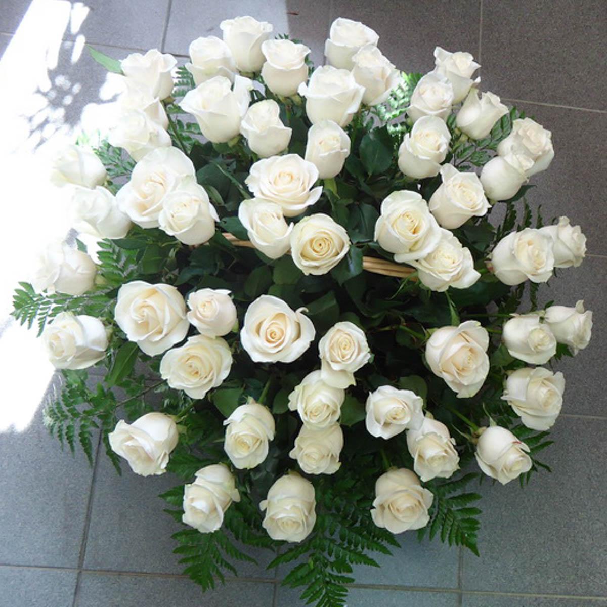 аллергии большой букет белых роз фото и большой белый медведь такие характеристики, как