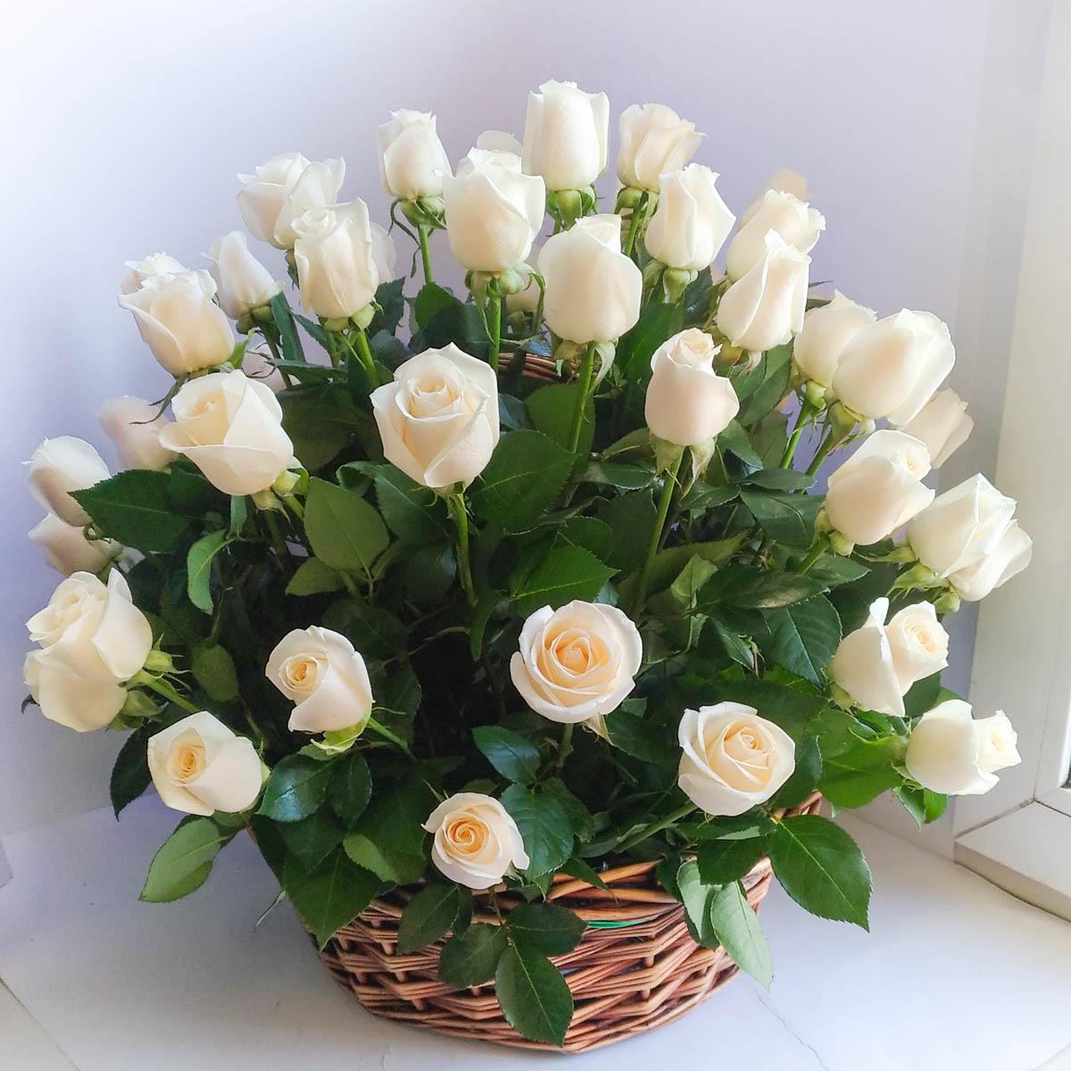 легко фото открытку из белых роз букет красивый годы второй мировой