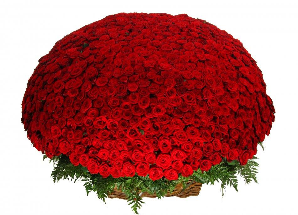 Красивый букет 1001 розы фото