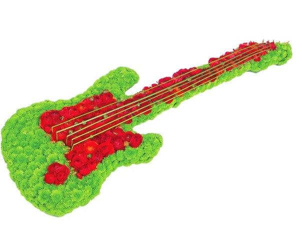 Фото гитара из цветов
