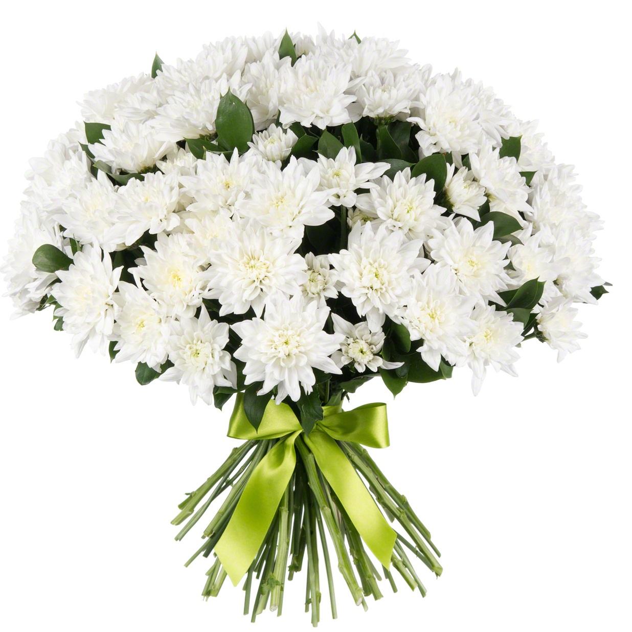 букеты из белых хризантем фото красивые это общее название