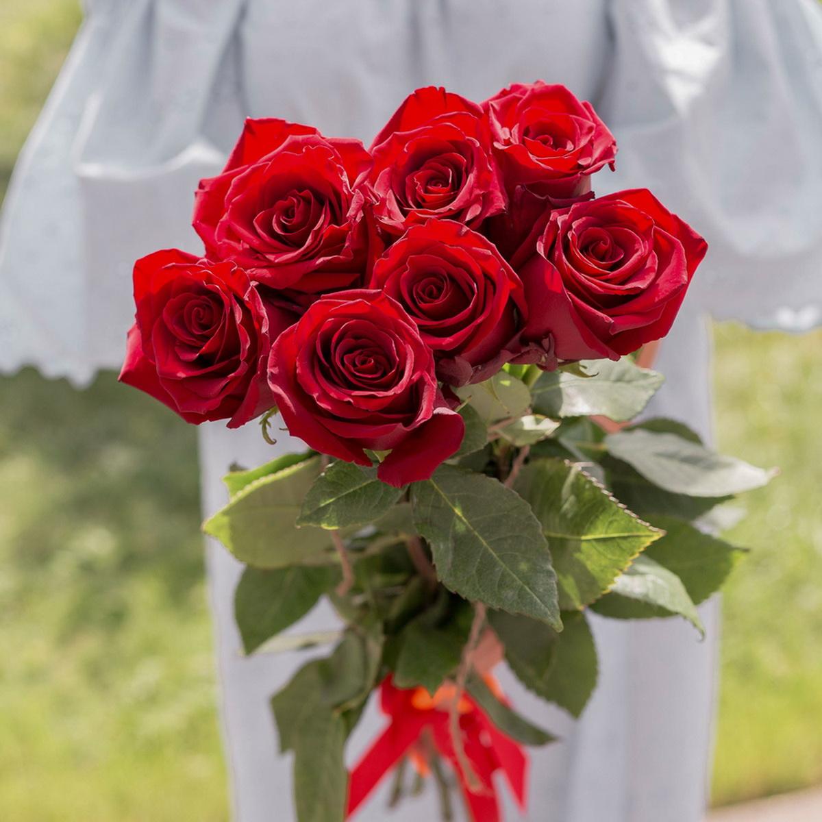 букет из белых и алых роз фото этот праздник свой