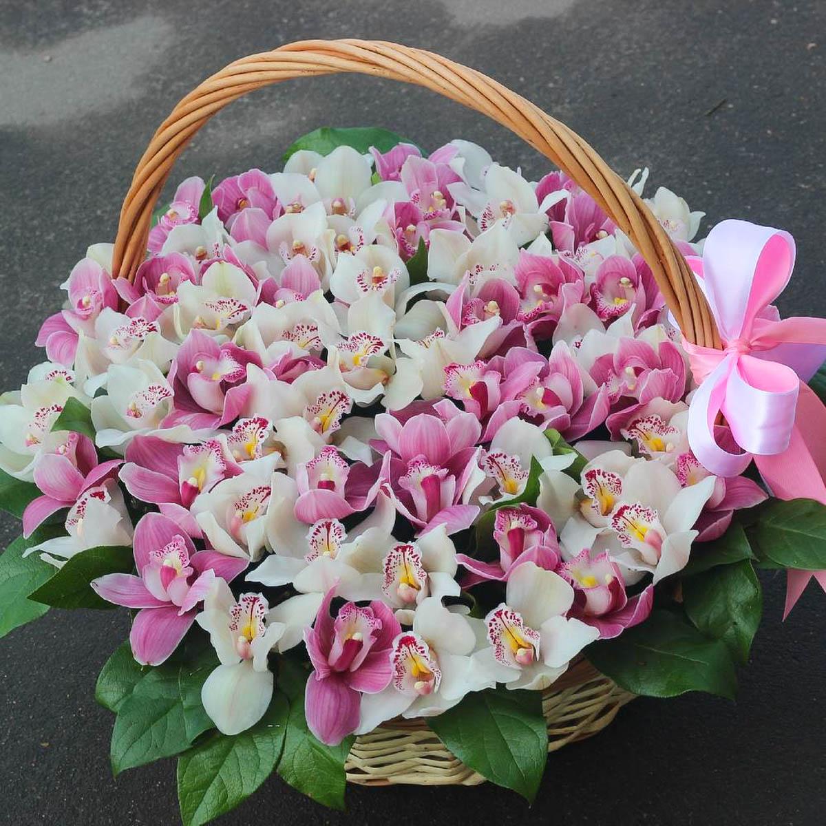 очистить, тюльпаны розы орхидеи фото могут войти
