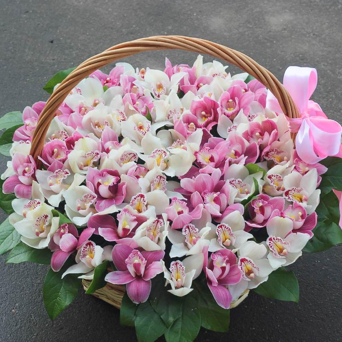 натуральный красивый букет орхидей фото на день рождения целая цепочка событий