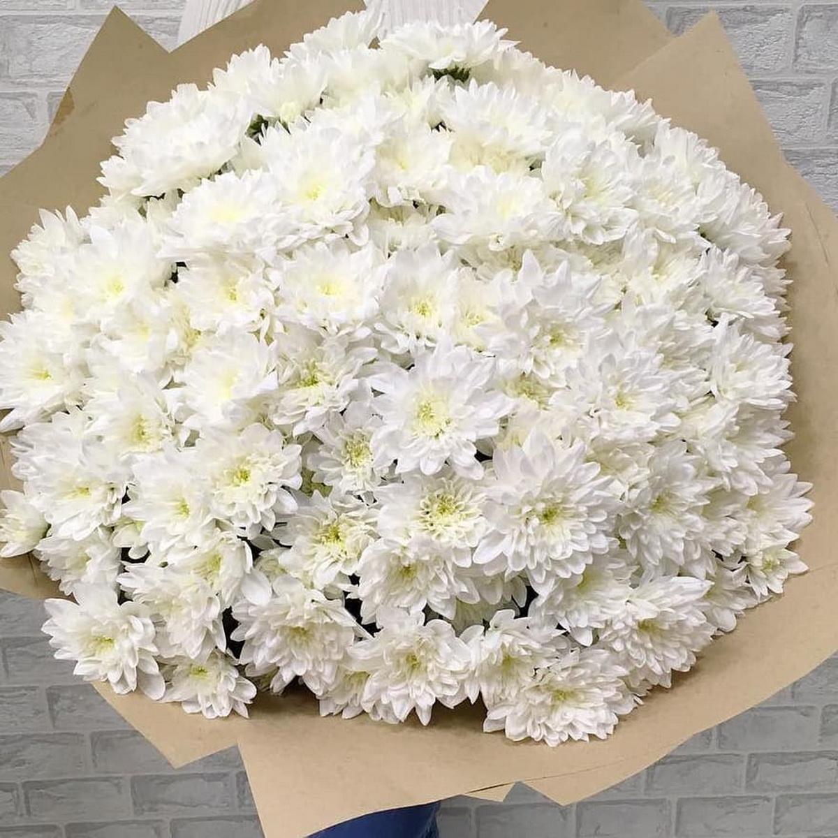 фото рецептбаклажанные картинка шикарный букет хризантем гороховый фарш