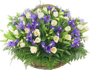 Заказать букет цветов в новосибирске недорого, доставка цветы эквадор